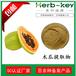 木瓜提取物10:1慧科厂家直销品质保证现货包邮木瓜粉