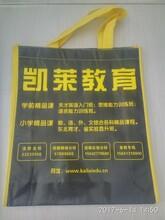 大连无纺布袋老厂家手提袋环保印刷环保袋设计