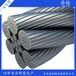 镀锌/光面钢丝绳远销海外质量保证
