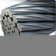 浩铵包胶耐磨钢丝绳拉索绳工厂