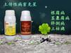 湖南白芨葉枯病采用中藥殺菌劑治療