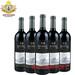 雅云坊国际红酒汇进口葡萄酒招商加盟代理魔力珍藏红葡萄酒