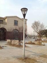 河北路灯杆厂家供应品质庭院灯灯杆图片