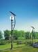 河北灯杆造型灯生产厂家