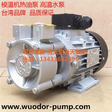 TECOTAMOTORI高温油泵YS-20A泵导热油泵热水循环泵