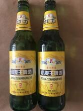 誠招代理小麥王易拉罐啤酒500ml9罐浙江圖片
