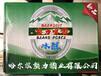 小麦金啤易拉罐啤酒孟津县