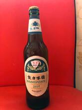 誠招代理小麥王易拉罐啤酒玻璃瓶果啤浙江圖片