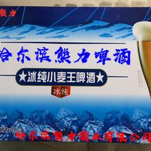 招商小麥王易拉罐啤酒320ml24聽浙江圖片
