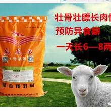 育肥羊预混料//育肥羊专用饲料预混料图片