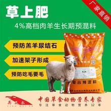 改良波尔山羊饲料波尔山羊饲料哪个牌子好?