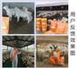 羊的饲料添加剂催肥饲料添加剂
