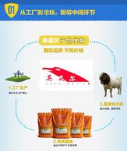 羊的养殖饲料/羊养殖饲料配方价格图片