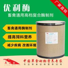 复合酶制剂价格饲料级饲料级酶制剂图片