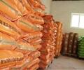 兔增肥方法镇江市丹徒区