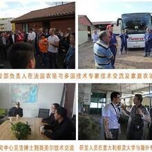 湖北省肉羊预混料生产厂家图片