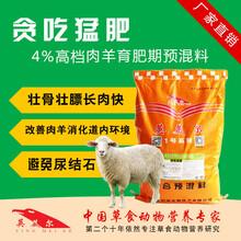 育肥羊预混料怎样育肥羊免费物流图片