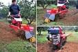 手扶小型开沟培土机果园大棚旋耕除草机手把360度旋转