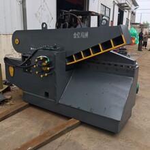 自動控制鋁合金剪斷機鱷魚式薄鐵剪切機廠家直銷圖片