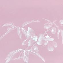 王步瓷版画拍卖价格值多少钱?