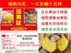 母雞長黃油吃什么藥老母雞長黃油的產品雞吃什么快速長黃油