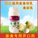 育雛雞天開口用什么比較好,雛雞開口藥預防雞白痢沙門氏菌
