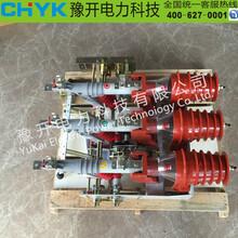FKN12-12DR/630A户内高压负荷开关电合电分熔断器组合开关图片