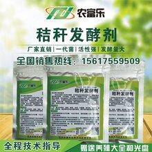给秸秆做成青储饲料农富乐青储发酵剂少不了图片