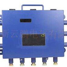 KJJ12矿用本安型网络交换机-工业以太网交换机