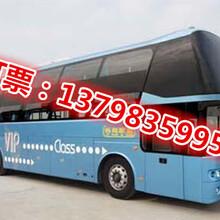惠州到靖江客车直达//151-9036-7700+方便快捷图片