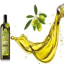 上海橄榄油进口报关