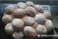 恐龙蛋化石拍卖成交价是多少,四川三希堂拍卖有限公司