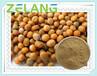 代加工黄芥子提取物,药食两用资源提取物