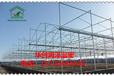 养殖温室水产养殖温室就选北京华创润泽温室