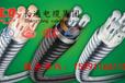 长通电缆南阳供应YJHLV224×50+1×25mm铝合金电缆