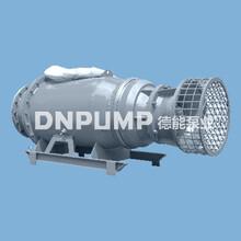 无需泵站低成本大流量轴流泵图片