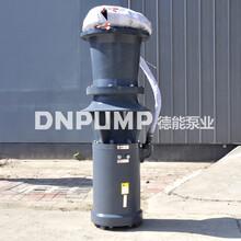 德能350QSZ简易式潜水轴流泵生产销售图片