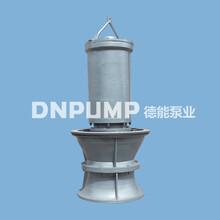 供水排水工程潜水轴流泵图片