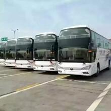 哈尔滨到安顺汽车151-2453-0617长途汽车图片