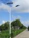 湖南太阳能路灯厂家直销湖南宁乡、湘潭、汨罗、新农村建设6米30W太阳能路灯