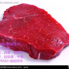 牛羊肉冻品批发,牛腩,腱子,羊腿,羊排等牛羊肉冻品批发
