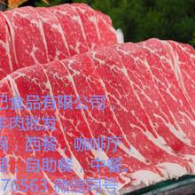 进口牛羊肉,牛肋排,棒骨,脊骨,羊排等牛羊肉冻品批发