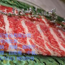 牛羊肉批发,肥牛羊卷牛腩腱子上脑等进口牛羊肉冻品批发