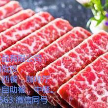 进口牛羊肉,牛腩,腱子,羊腿,羊排等牛羊肉冻品批发