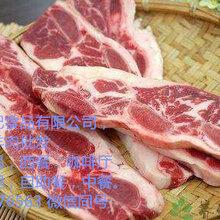 济宁牛羊肉冻品批发市场,羊排羊蝎子羊腿包,山羊肉羊卷高钙羊砖羊杂羊脸批发图片