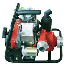 加拿大森林消防泵WICK250加拿大原裝進口濟寧發貨