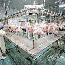 內蒙古大型屠宰廠設備回收專業生產線收購單位公司圖片