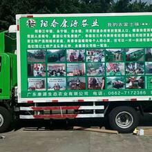 福永车体广告审批车体翻新制作图片