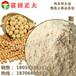 供应食品级膨化大豆粉,大豆粉,膨化大豆面