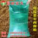 供应乌拉圭牛肉骨粉,饲料添加剂,家禽养殖饲料,水产养殖